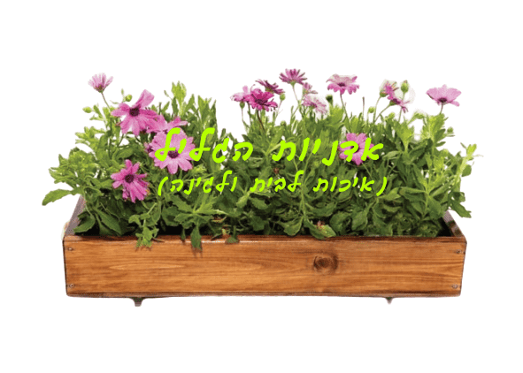 Wooden planters rectangle-B0