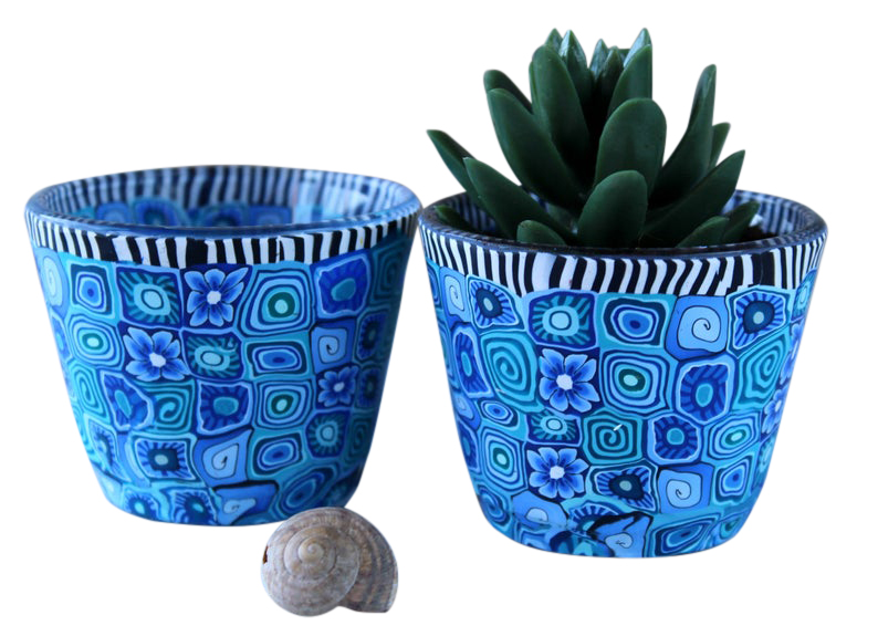 Set of 2 Succulent Plant Pots