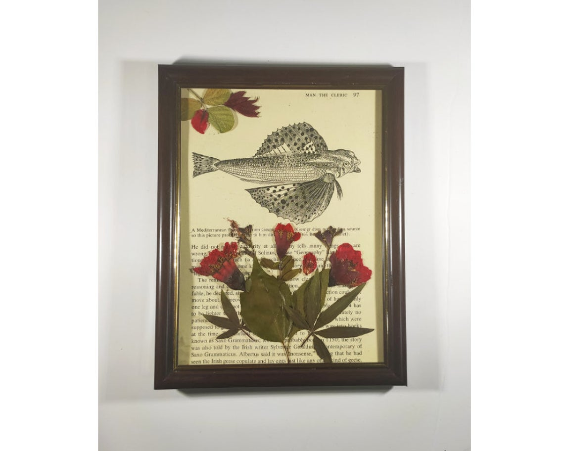 Flowers and fish vintage old book page with pressed pomegranate flowers framed wall art