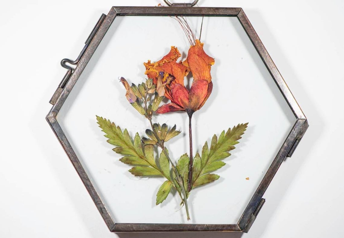 Pressed flowers wall art in a glass & metal hexagon frame, boho style